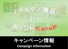 bnr_side_campaign
